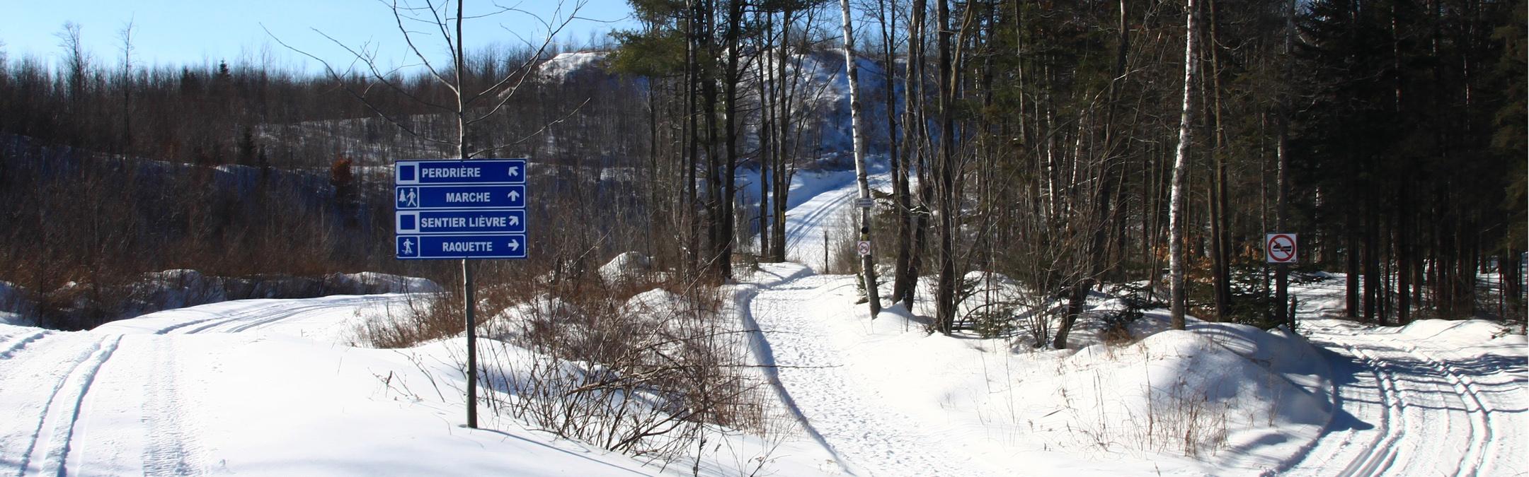 les-sentiers-brandon-winter