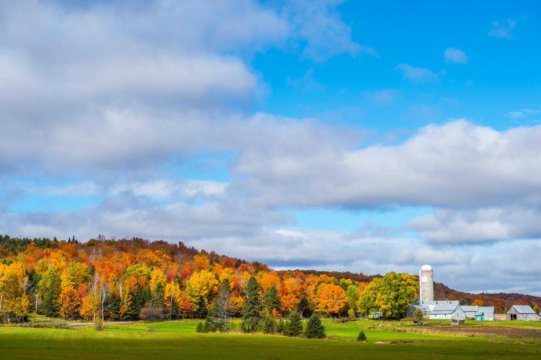 Paysage d'automne dans le Piémont