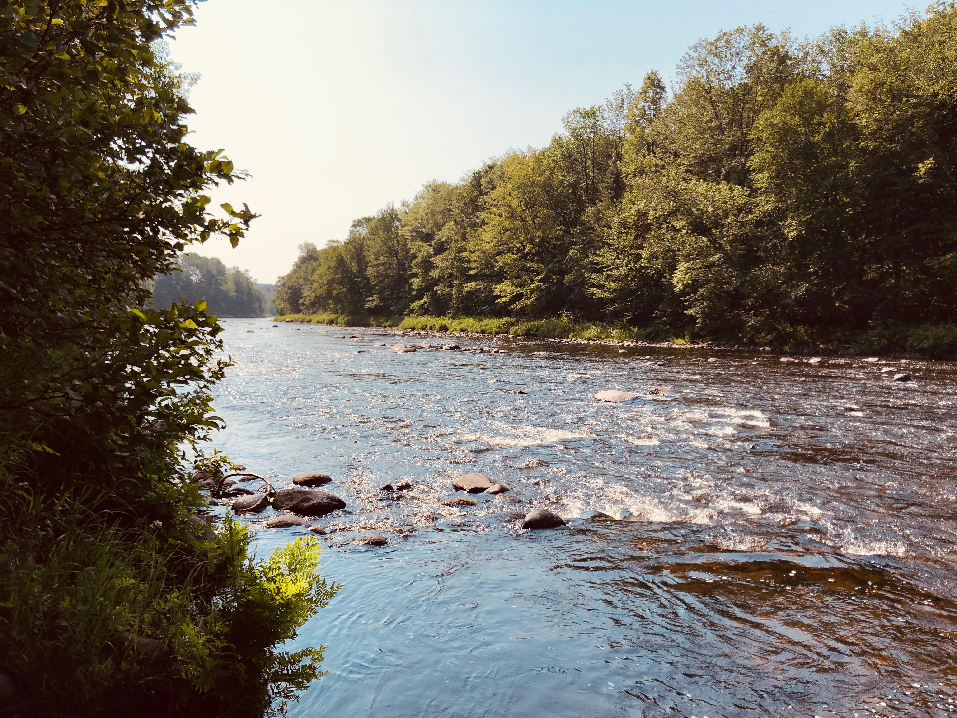 Rivière chez Espaces Expérienza